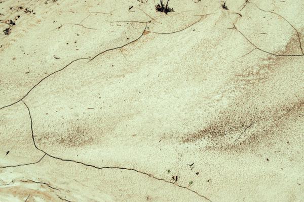 la terra sotto i piedi_evidenza